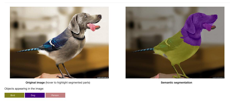 Image segmentation example image