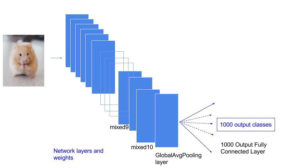 Fine-tuning Convolutional Neural Network on own data using Keras