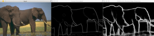 Edge Detection results