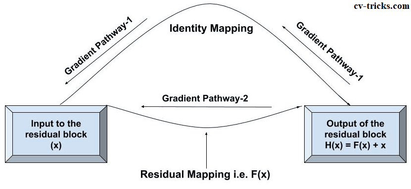Gradient Pathways in ResNet