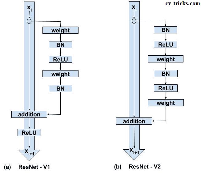ResNet V1 and ResNet V2